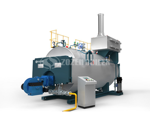 wns boiler picture